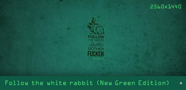 03 Artikel_Bilder_VORSCHAU_640x310_Rabbit-green